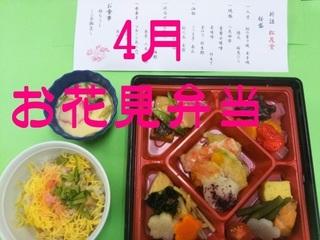 04.お花見弁当.jpg