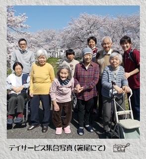 デイ桜.jpg